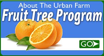 UFUAboutFruitTreeProgram
