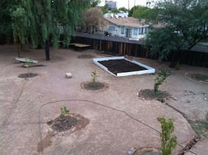 Aerial View of 1st _Door_ Garden