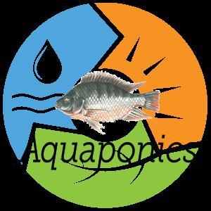UFUAquaponics1