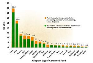 meat emissions