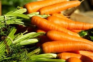 vegetables-1067269_1280