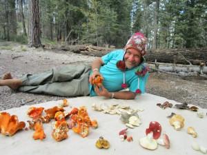 Doug Simons Wild Mushrooms 2015 _opt