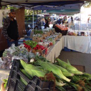grenn-sister-gardens-at-market