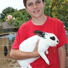 Boy W Rabbit