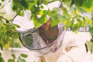 10 Julia Mcguire On Urban Beekeeping Urbanfarmu
