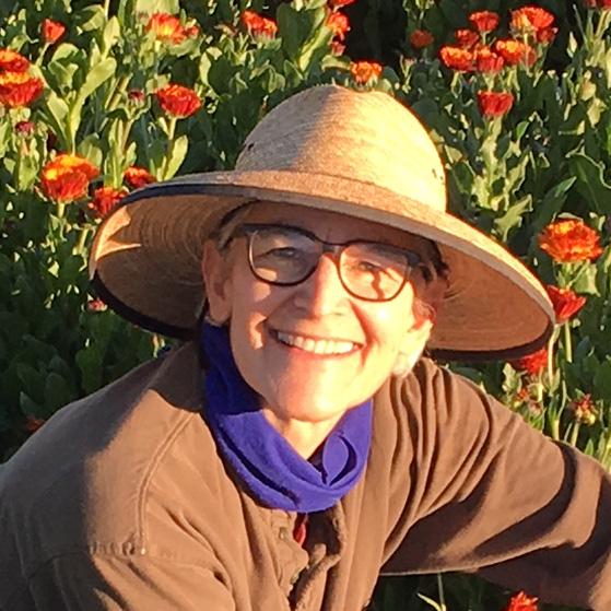 Emily Heller Profile Pic
